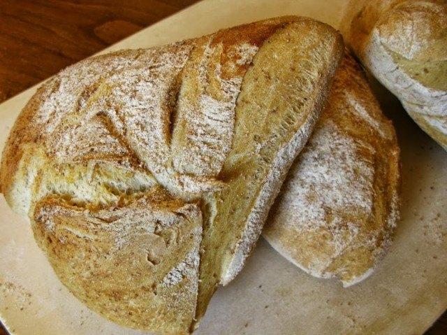 pane brutto di camaiore