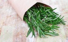Il rosmarino: proprietà e usi in cucina