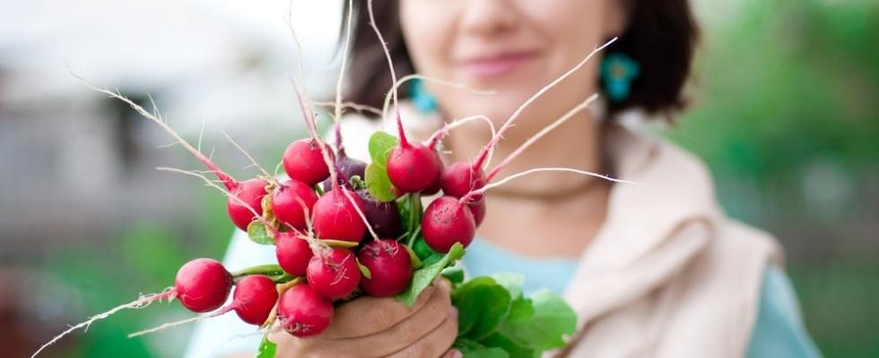 Le verdure della primavera
