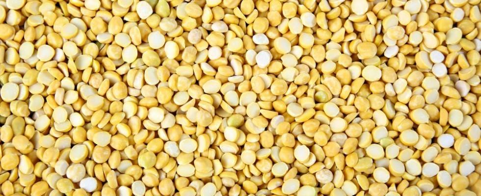 Dal: la proteina della cucina indiana