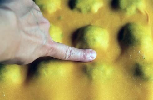 Il confezionamento dei ravioli
