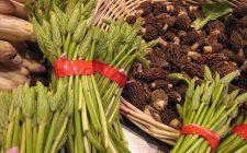 Asparagi selvatici sott'olio, ecco la ricetta e i consigli di conservazione