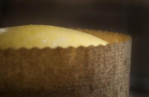 la lievitazione della pizza di pasqua al formaggio
