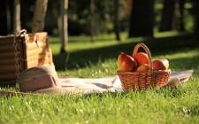 Milano: dove organizzare un picnic