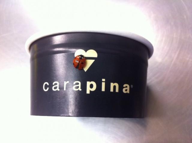 carapina-e-la-coccinella