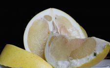 I pompelmi alla polpa di granchio, la ricetta dell'antipasto raffinato