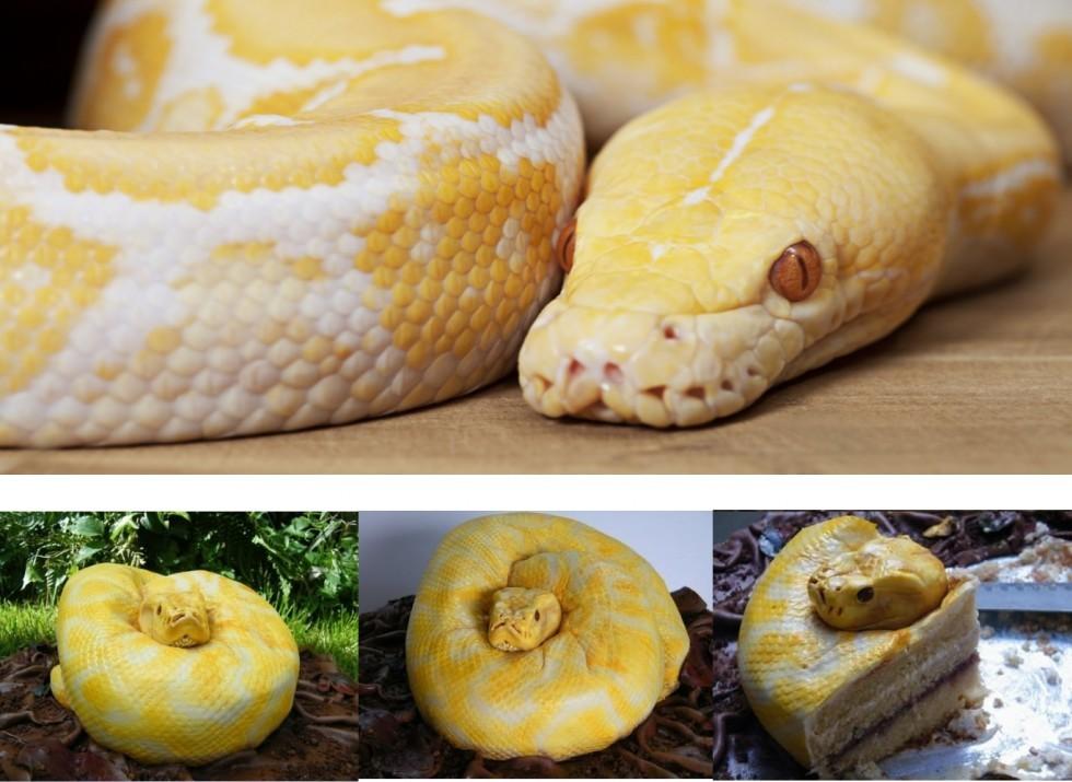 Cake design: le torte più strane del web - Foto 20