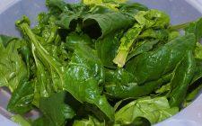 Ecco gli spinaci con ricotta da fare in padella