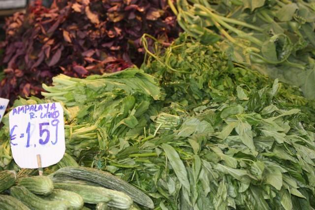 verdure Esquilino