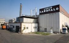 Il caso Italiani Vs Garofalo