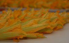 Come fare i fiori di zucca ripieni di ricotta e speck
