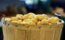 La ricetta delle patate novelle al cartoccio per un contorno saporito