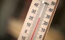 Temperatura ambiente: l'ideale per 10 cibi