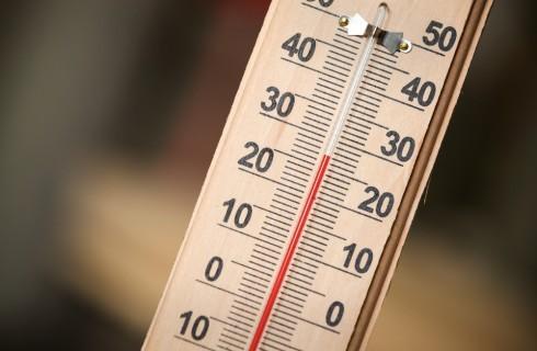 A temperatura ambiente: 10 cibi che non dovresti mangiare freddi