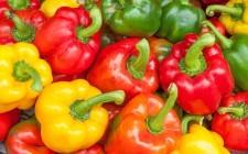 7 metodi per rendere digeribili i peperoni