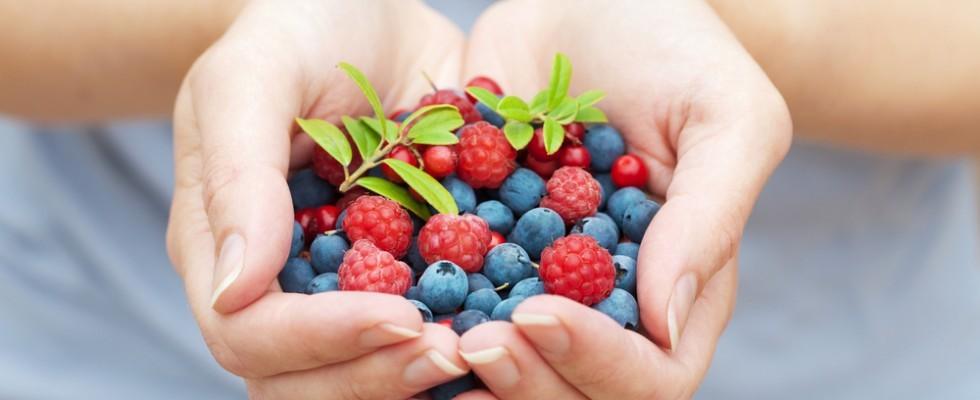 Il sapore dell'estate: frutti di bosco
