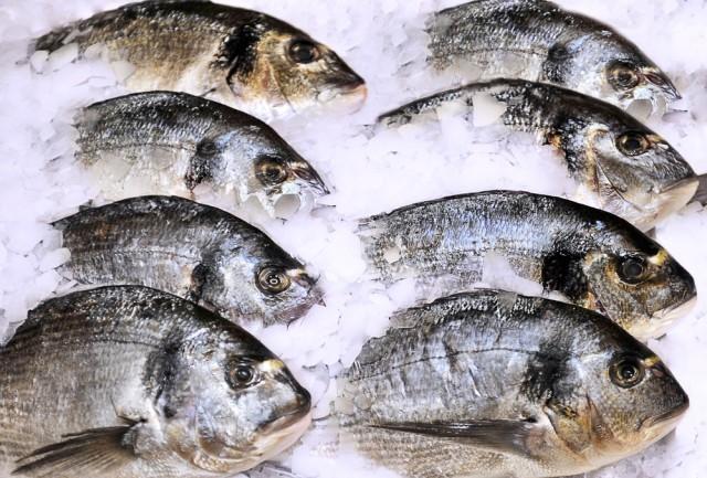 Pesce surgelato