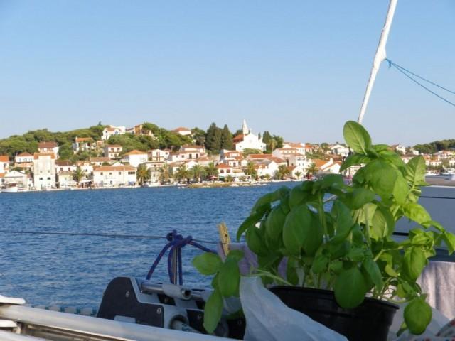 Basilico in barca