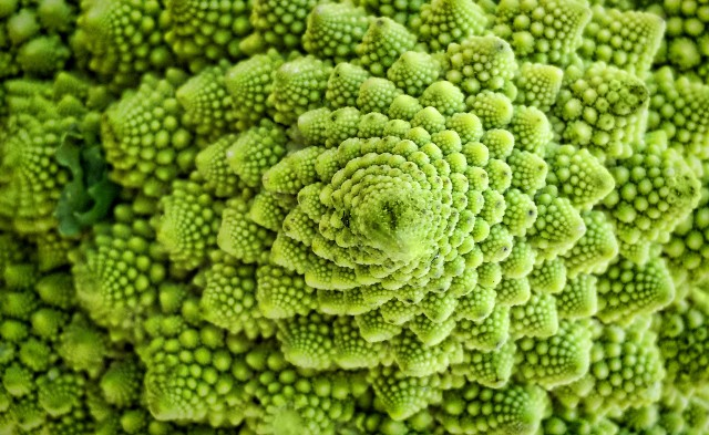 broccoli romaneschi flickr