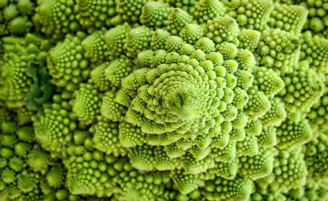 broccoli romaneschi flickr