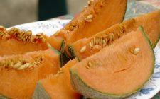 Il melone con gamberetti per un antipasto sfizioso