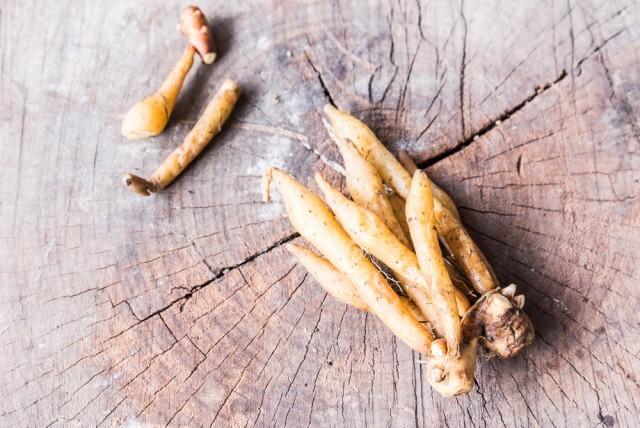 radice di ginseng wonder food