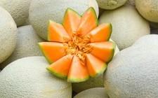 5 modi per usare il melone in cucina