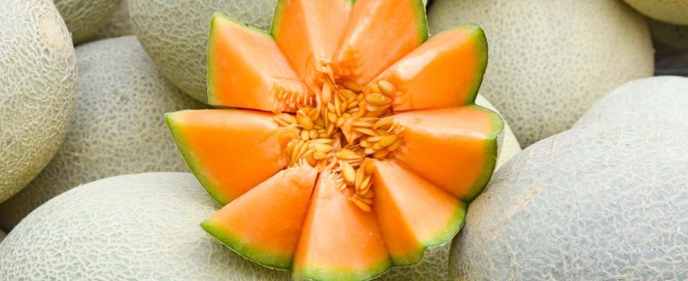 5 ricette alternative con il melone