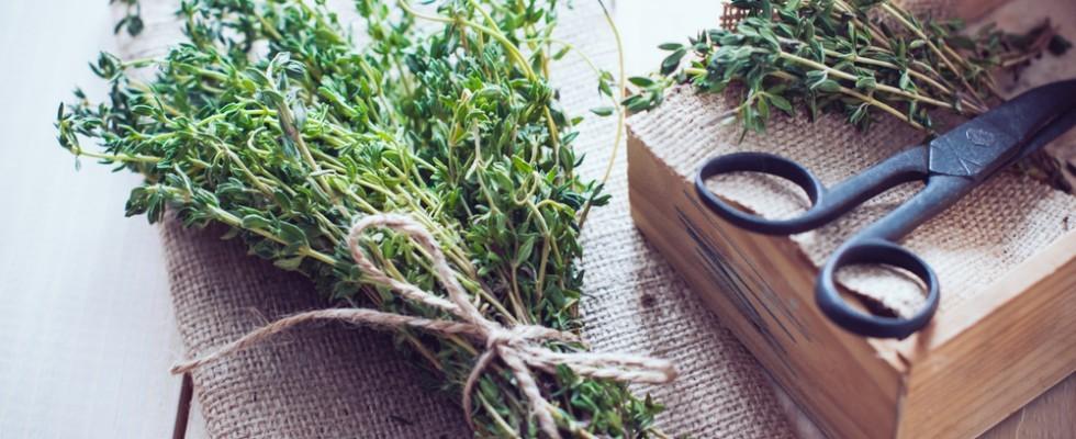 Fatto in casa: essiccare e conservare le erbe aromatiche