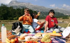 9 piatti tipici di Ferragosto