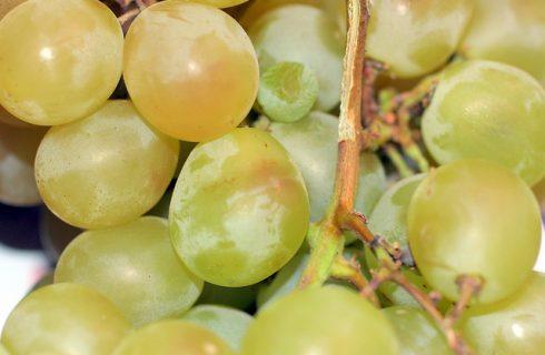 Ecco l'uva con formaggio e pistacchi per un finger food sfizioso