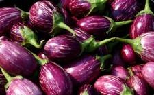 Frutta e verdura di stagione: settembre