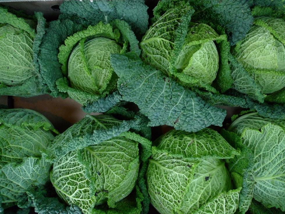 Ottobre: verdure e ortaggi di stagione - Foto 4