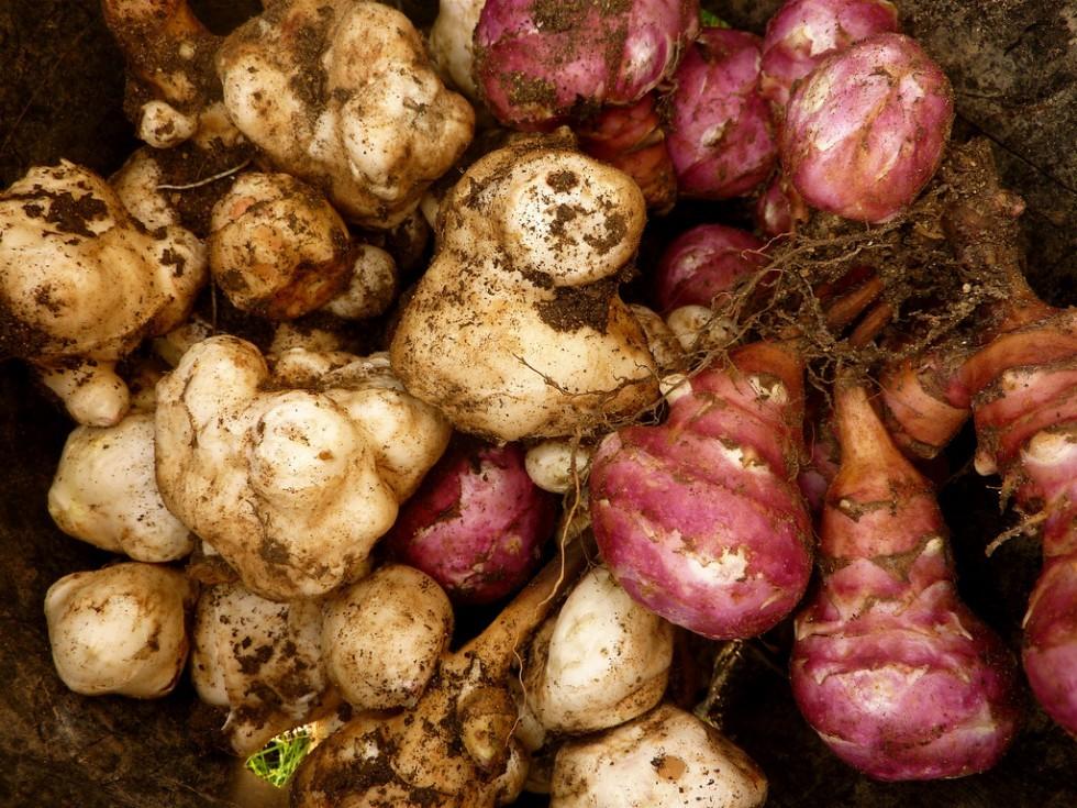 Ottobre: verdure e ortaggi di stagione - Foto 20
