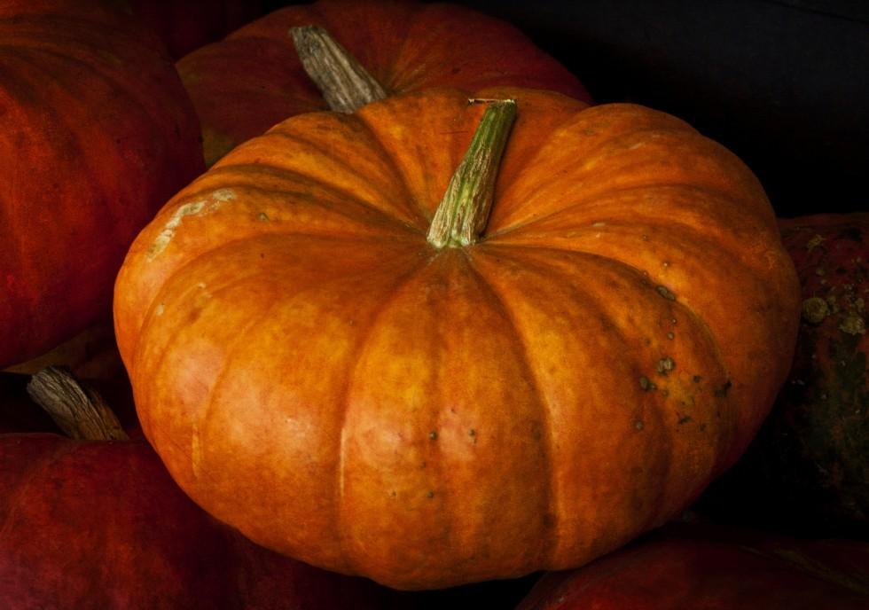 Ottobre: verdure e ortaggi di stagione - Foto 5