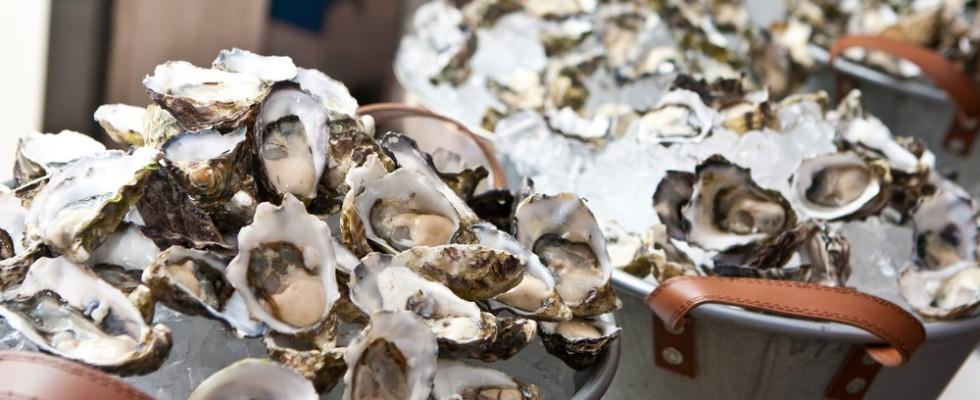 Tipi di ostriche: mare di stagione