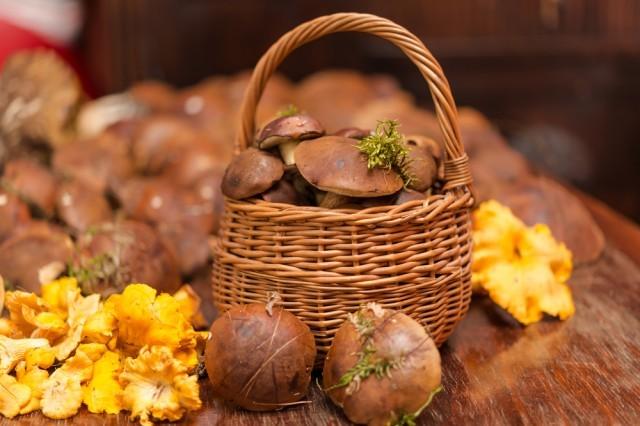 Funghi in cestello