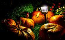 5 ricette economiche per il buffet di Halloween