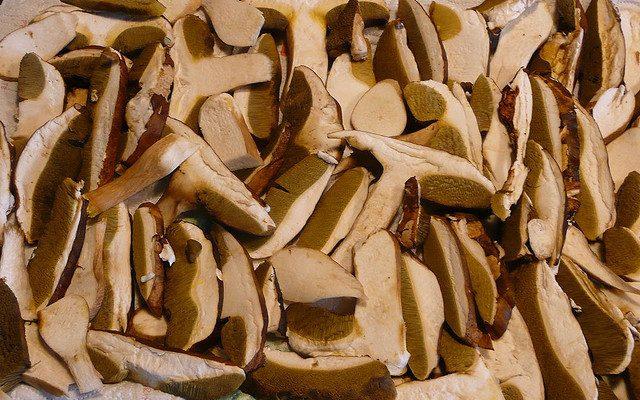 Come preparare i funghi fritti con farina gialla