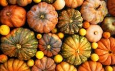 Di stagione: 5 modi per cucinare la zucca