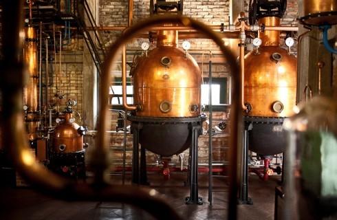 Imparare cose nuove: come si produce il distillato d'uva