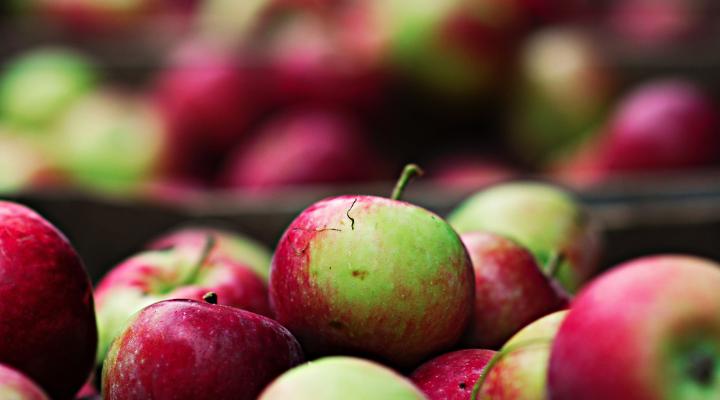Marmellata di mele: la ricetta con il Bimby