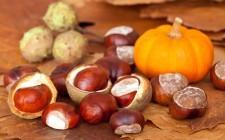 L'autunno in 20 ricette da non perdere