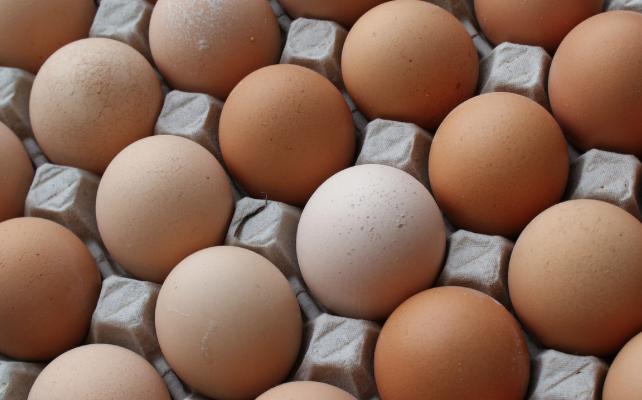 Uova sode al microonde: la ricetta facile e veloce