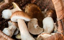 Le scaloppine di soia ai funghi per il secondo vegano a Natale