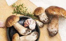 Funghi porcini gratinati: la ricetta vegan