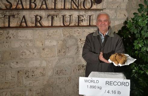 Cose da Guinness: il Tartufo bianco più grande del mondo