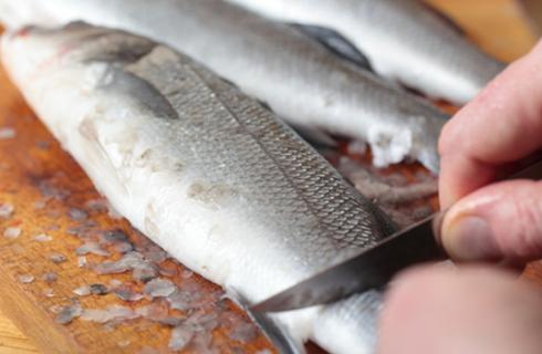 Come pulire il pesce: gli strumenti e le tecniche
