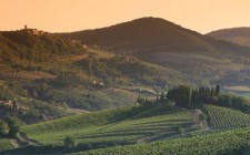 Montevertine: orgoglio del Chianti