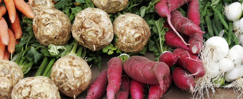 Tuberi e radici: le differenze